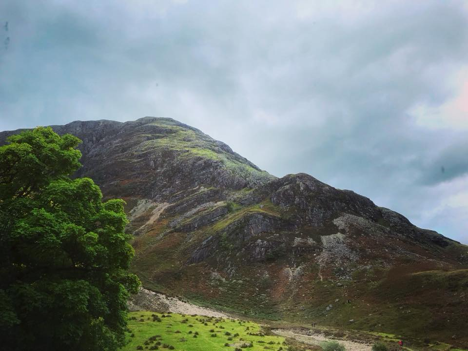 Photo of a mountain and bright green tree leaves on a cloudy day